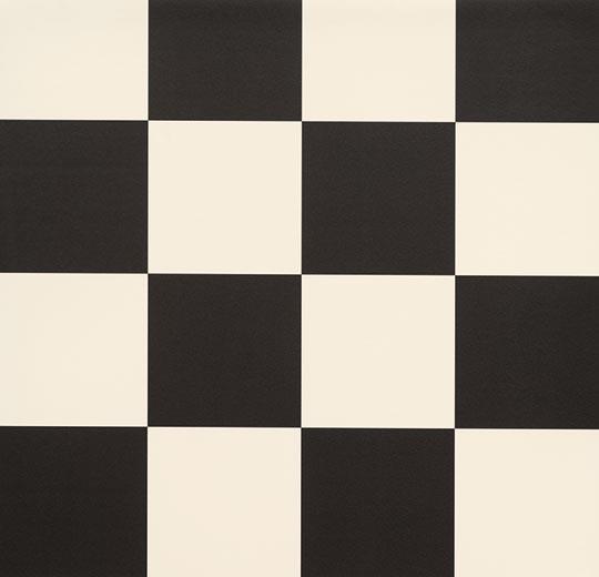 6381 Zwart-wit