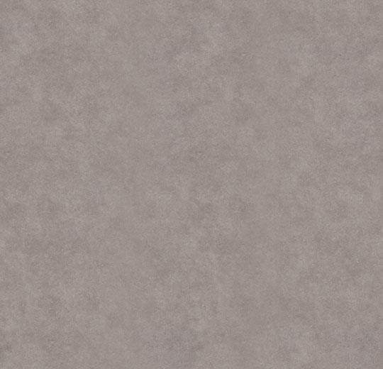 6581 Duifgrijs