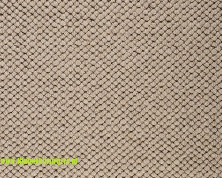 Best Wool Venus 119